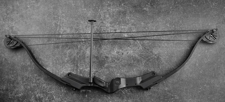 dual cam bow